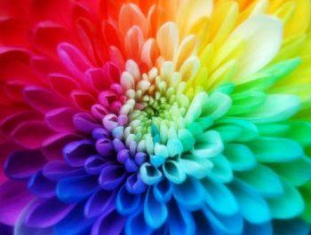 Cum îi influenţează pe copii culorile